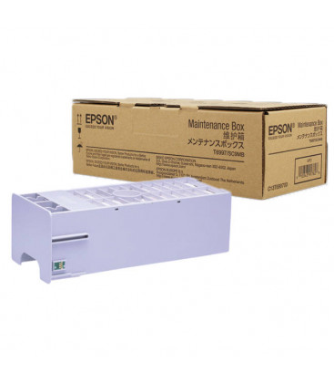 Genuine Epson T6997 C13T699700 Maintenance Box