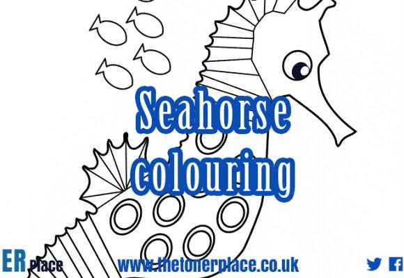 Seahorse colouring